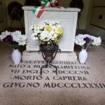 Carano Garibaldi 11