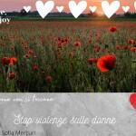 stop alla violenza sulle donne (13)
