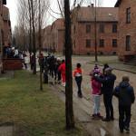 Auschwitz3