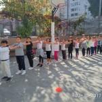 Volley 15