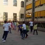 Volley 20