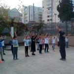 Volley 7