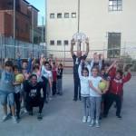 Volley 8